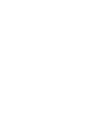 White icon of a pumpkin
