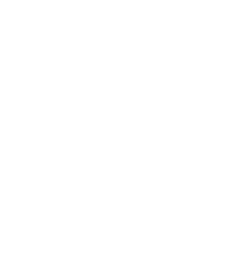 White icon of a watermelon