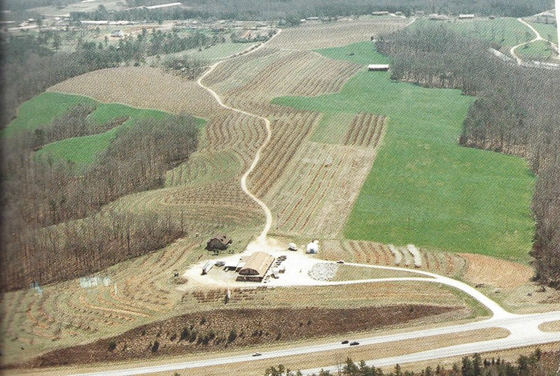 Aerial photo of Jaemor Farms in 1985